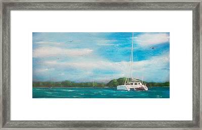 Catamaran In Salinas Harbor Framed Print by Tony Rodriguez