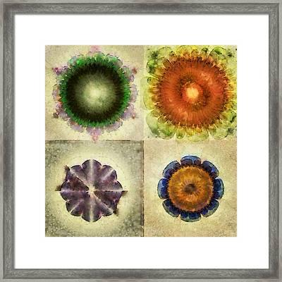 Catamiting Dream Flower  Id 16164-230328-31150 Framed Print by S Lurk