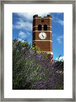 Catamount Purple Framed Print