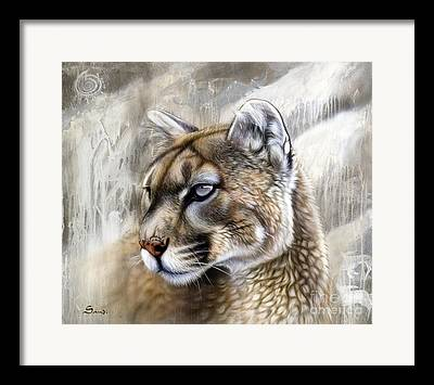 Cougars Framed Prints