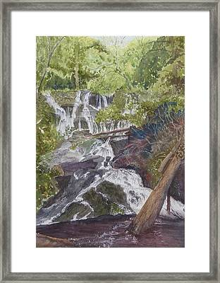 Framed Print featuring the painting Catawba Falls - Working Notes by Joel Deutsch