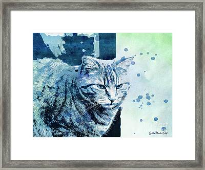Framed Print featuring the digital art Catbird Seat by Jutta Maria Pusl