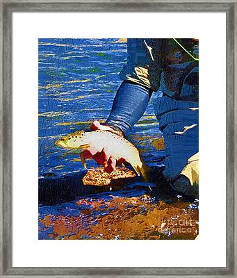 Catch And Release Framed Print by Diane E Berry