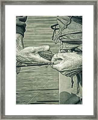 Catch And Release Rainbow Trout In Green Monotone Framed Print by Jennie Marie Schell