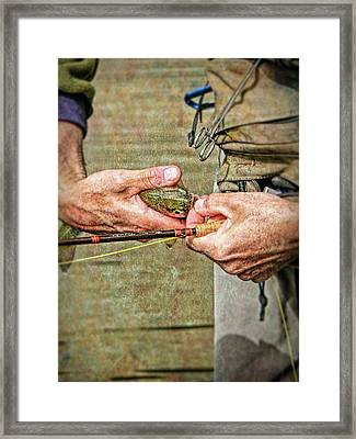 Catch And Release Rainbow Trout Framed Print by Jennie Marie Schell