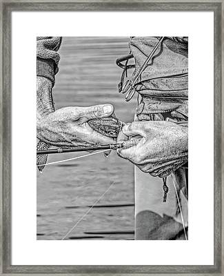 Catch And Release Rainbow Trout Monochrome Framed Print by Jennie Marie Schell