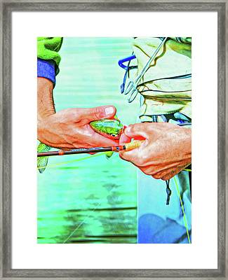 Catch And Release Rainbow Trout Retro Colors Framed Print by Jennie Marie Schell