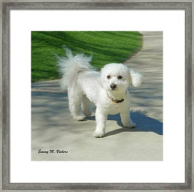Catch Me If You Can Mommy Framed Print