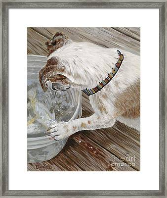 Catch Of The Day Framed Print by Danielle  Perry