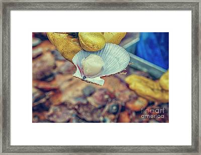 Catch Of The Day Framed Print by Patricia Hofmeester