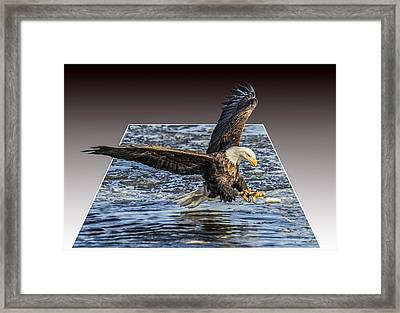 Catching Lunch Deluxe Framed Print by E Mac MacKay