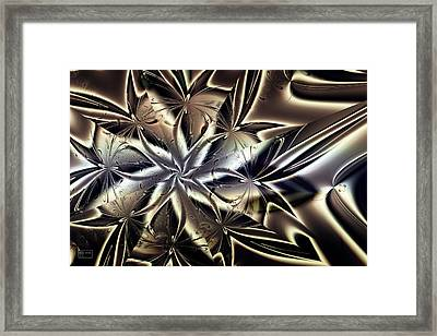 Catching Some Rays Framed Print by Jim Pavelle