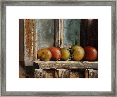 Catching Summer Rays Framed Print