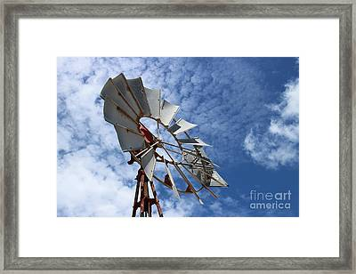 Framed Print featuring the photograph Catching The Breeze by Stephen Mitchell