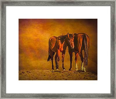 Catching The Last Sun Photoart Framed Print