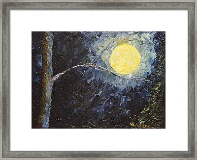 Catching The Moon Framed Print