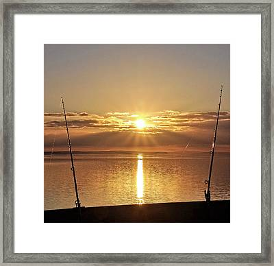 Catching ....the Sun Framed Print by Alex Hardie