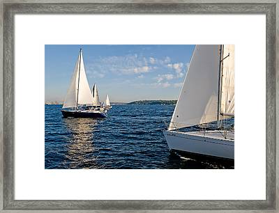Catching Up Framed Print by Tom Dowd