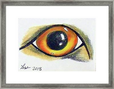 Cateye Framed Print