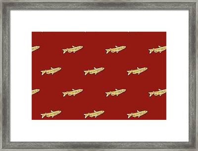 Catfish Pattern And Red Background Framed Print by Janice Knauss