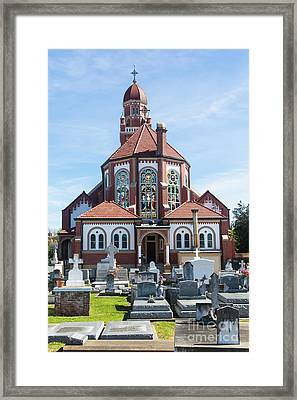 Cathback Framed Print by Cecil Fuselier