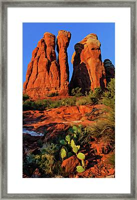Cathedral 06-074 Framed Print by Scott McAllister