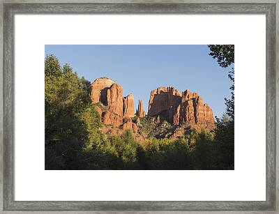 Cathedral In The Trees Framed Print