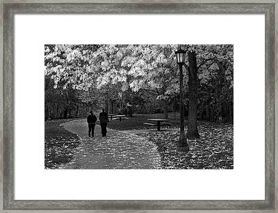 Cathedral Park In Fall Bw Framed Print