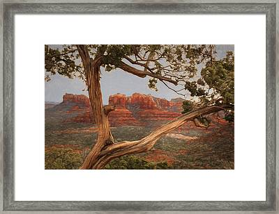 Cathedral Rock View Framed Print by Donna Kennedy