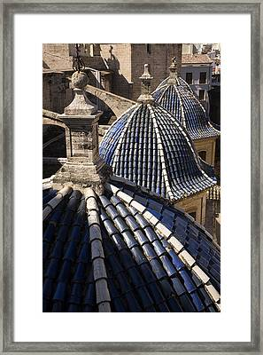 Cathedral Valencia Side Domes Framed Print