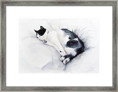Catnap 1-2 Framed Print