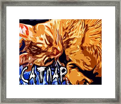 Catnap Framed Print by David G Paul