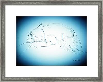 Catnap Framed Print by Denise Fulmer