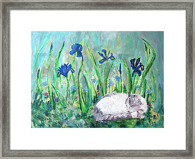 Catnap In The Garden Framed Print