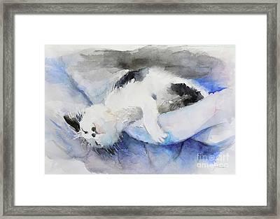 Catnap2-1 Framed Print