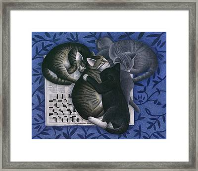 Cats And Crossword  Framed Print by Carol Wilson