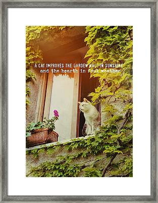 Cats Eye View Quote Framed Print by JAMART Photography