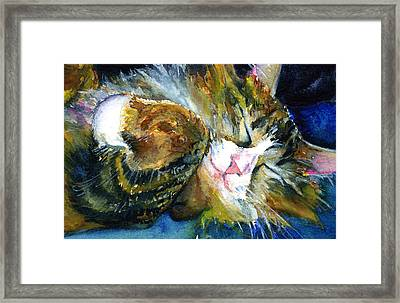 Cats Eyes 14 Framed Print by John D Benson