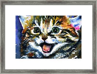 Cats Eyes 15 Framed Print by John D Benson