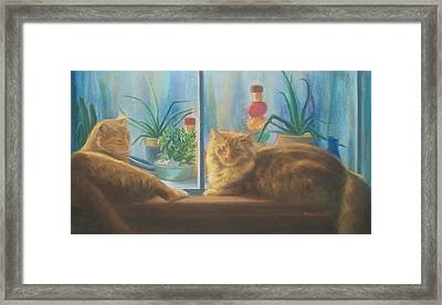 Cats In The Window Framed Print by Diane Caudle