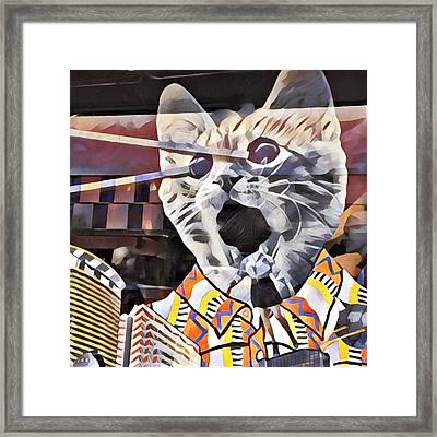 Cats On Congress Framed Print