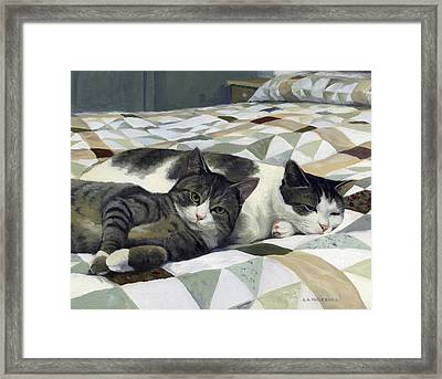 Cats On The Quilt Framed Print