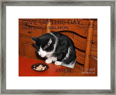 Cat's Prayer Revisited By Teddy The Ninja Cat Framed Print