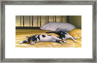 Cats Sleeping On Big Bed Framed Print by Carol Wilson