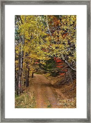 Catskill Color Framed Print by Deborah Benoit
