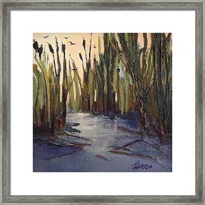 Cattails Framed Print