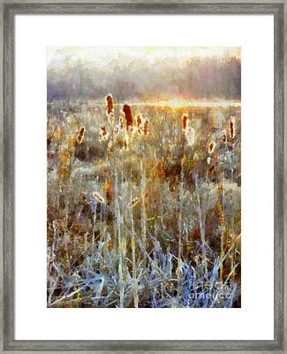 Cattails - Misty Morning - Marsh - Frost Framed Print by Janine Riley