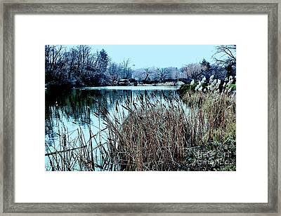 Cattails On The Water Framed Print