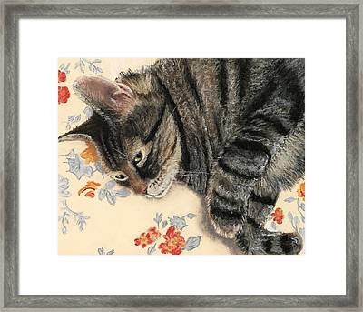 Cattitude Framed Print by Anastasiya Malakhova