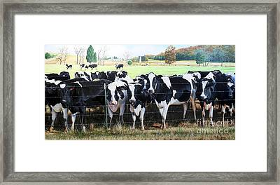 Framed Print featuring the painting Cattle Call by Mike Ivey